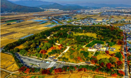 South Korea's Province Wants to Become Blockchain Hub, Launches Special Blockchain Committee