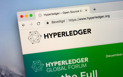 Hyperledger Enterprise Solutions: Top 5 Real Use Cases