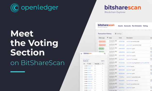 BitShareScan: Voting Section is Now Available
