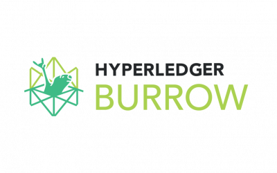 Hyperledger Burrow: the Backbone of Smart Contracts