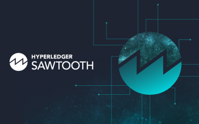 Hyperledger Sawtooth Overview: Looking at Permissioned Networks from a Different Perspective